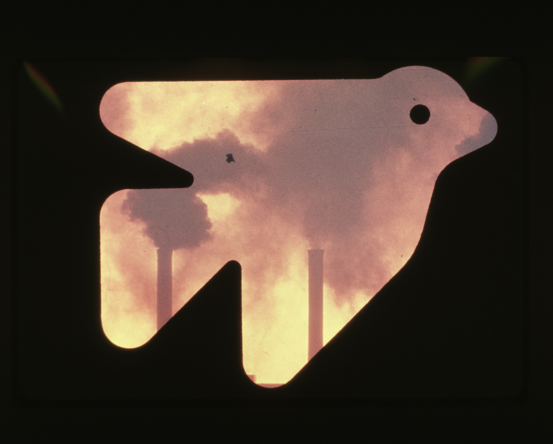 Pictogram of bird, with smoggy sky